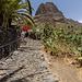 Canary Islands - Tenerife - Masca