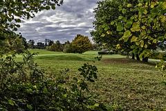 Farnham Golf Course autumnal view