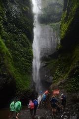 Indonesia, Java, Madakaripura Waterfall