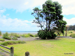 Opunake Beach