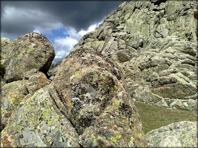 Granite and lichen I.