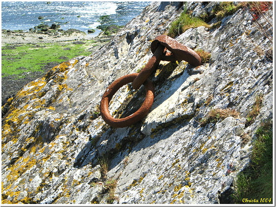 Rusty anchor ring, well anchored!