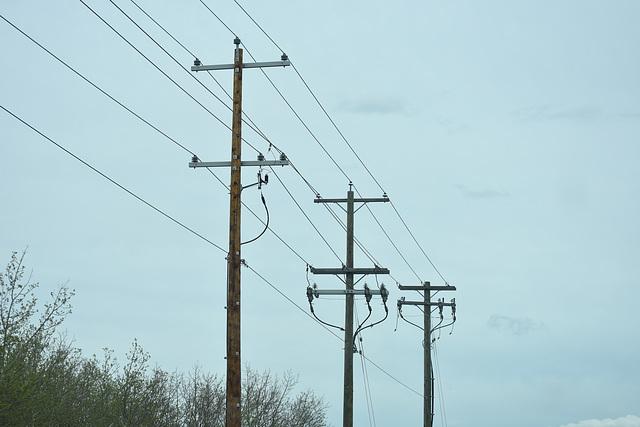 ENMAX Power 24.9kV - Calgary, AB