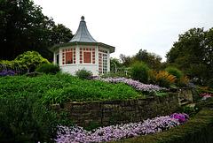 Teatime im Rosengarten - Teatime in the Rose Garden