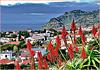 Madeira   : la bella città di Funchal e Cabo Girao