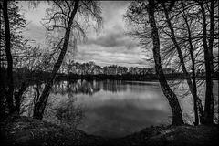 Berenbosteler See