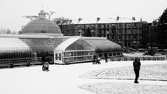 Botanic Gardens in the Snow