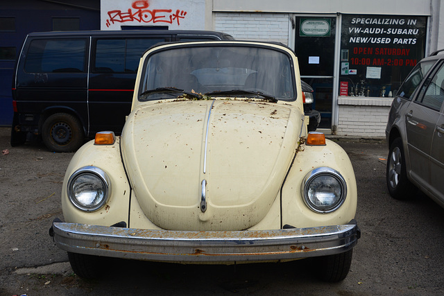 Canada 2016 – Toronto – Volkswagen Beetle