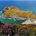 Samphire and Asparagus Islands, Porthcadjack.