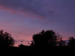ce matin le ciel était magique
