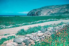 Milos 1944 - Near Pollonia