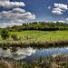 Netherton Hill