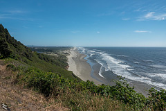 Coastal View South of Heceta Head Lighthouse and More! (+7 insets)