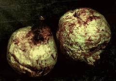 Pears in the dark