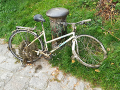 Bicycle Cadaver