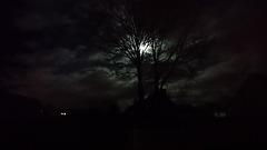 Ce soir la lune dans la tempête
