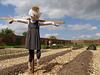 The happy scarecrow