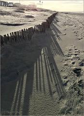 Fency Shadows...
