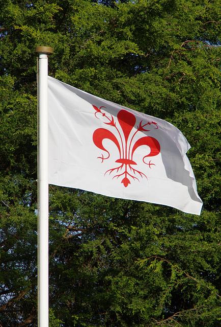 Florence flag