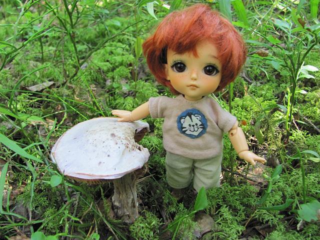 A lilac mushroom