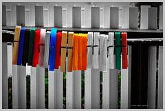 Tristesse ... keine Wäsche bei Regenwetter