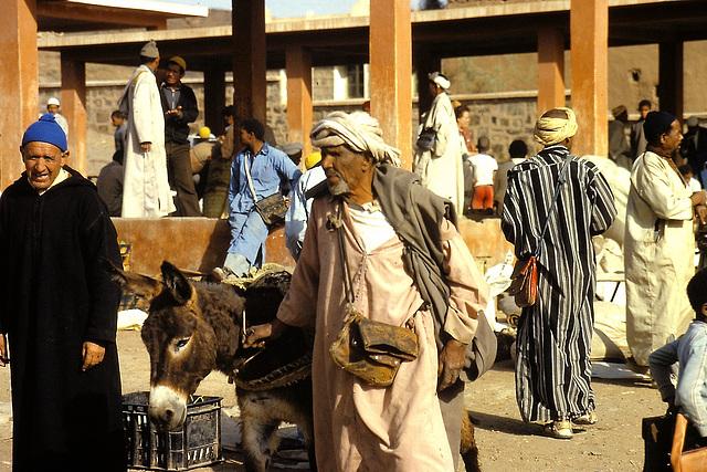 Maroc (MA) Avril 1979 (Diapositive numérisée).