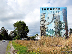 On Entering Tokoroa.
