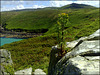 Zennor Hill from Zennor Head