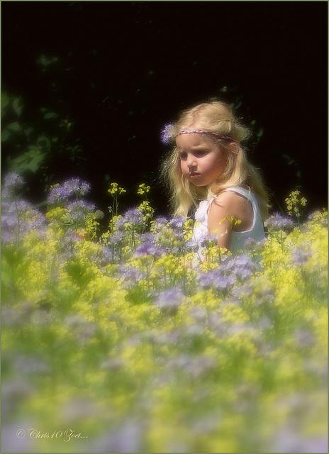 Flower Girl(s)... (+ 2x PiP)