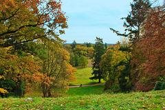 Landschaft bei Burg Schlitz
