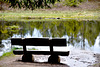 Lac de Lispach Vosges
