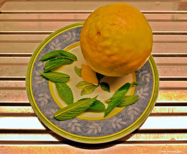 Aicha - meine Zitrone,  220 Gramm    -   PiP