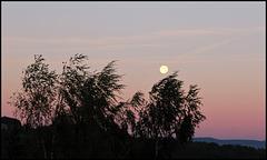 lune en coup de vent