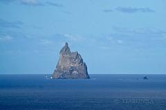 Ball's Pyramid