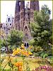 Barcellona : La Sagrada Familia in costruzione nel bellissimo parco con piante, fiori e laghetto