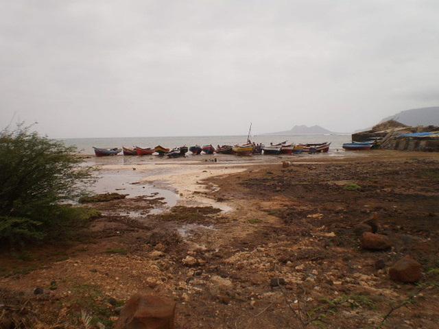 Fishing boats.