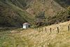 Neuseeland - Wainuiomata