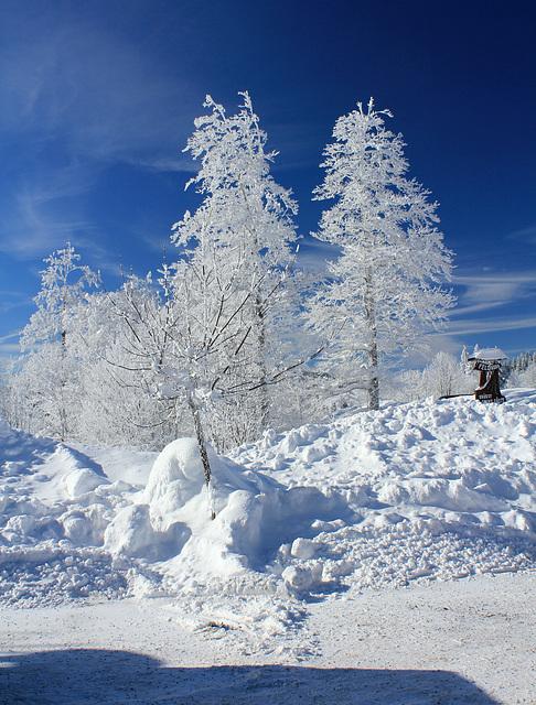 Wintermärchen auf dem Feldberg