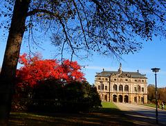 Herbst in Dresdens Großem Garten 04