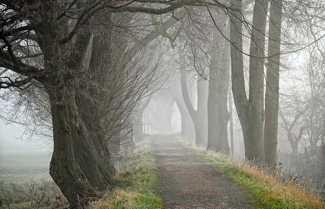 Nebelzeit