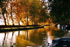 Humeur novembre sur le Canal du Midi