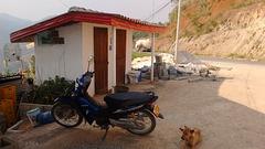 WC's guardian / Le gardien des toilettes
