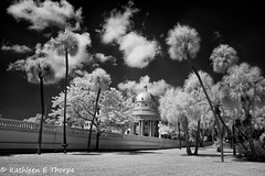 University of Tampa Infrared 005