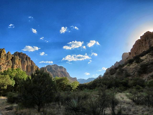 Cave Creek Canyon