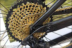 golden cogwheel