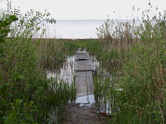 Проход к берегу / Passage to the Shore