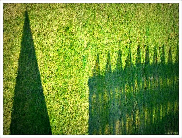 City on grass