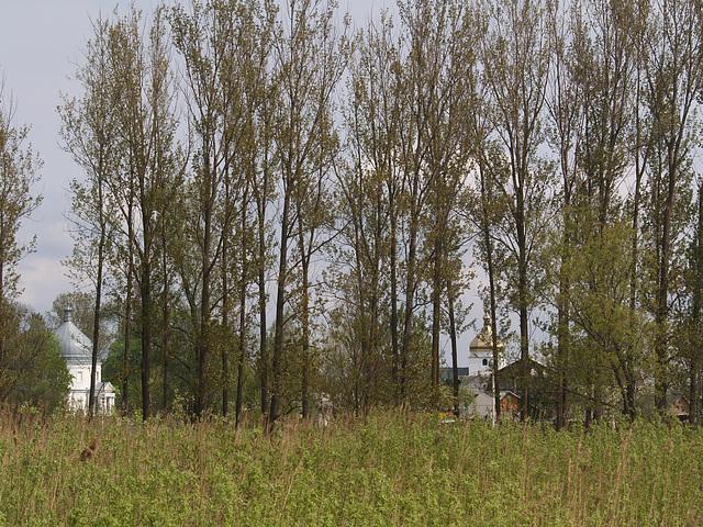 Церкви поселка Свитязь / Churches in the Village of Svityaz