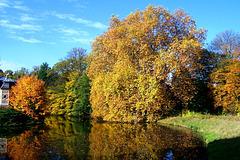 DE - Kerpen - Autumn at Schloss Türnich