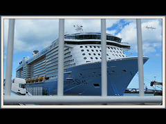 Le Paquebot :( Ovation of the seas) !